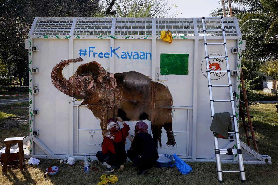 L'éléphant Kaavan.
