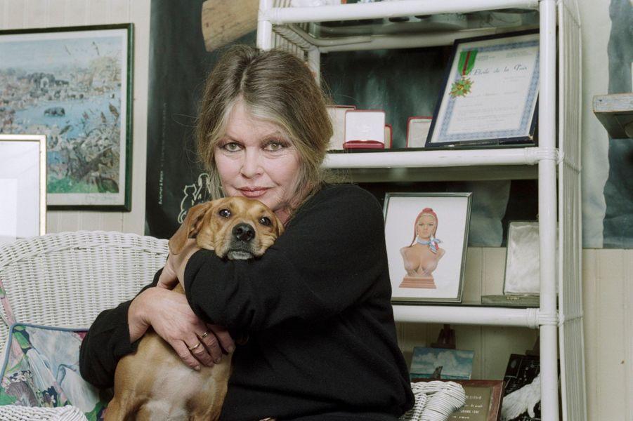 Paris, décembre 1993. rendez-vous avec Brigitte BARDOT dans les bureaux de sa Fondation. Brigitte Bardot pose avec un chien en le serrant dans ses bras.