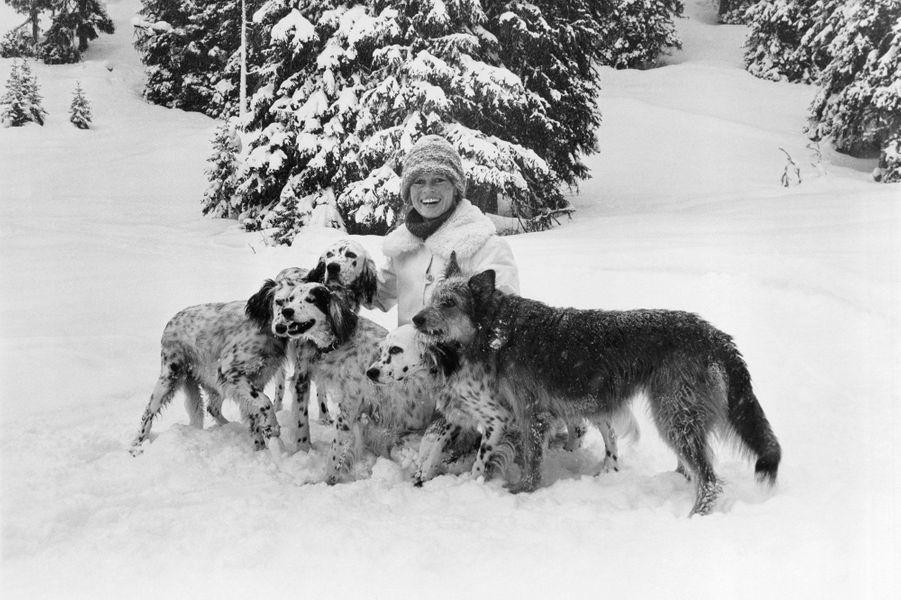 Le grand bonheur des chiens et de Brigitte BARDOT, c'est la promenade du matin, deux heures dans la neige, à Méribel. Janvier 1978.