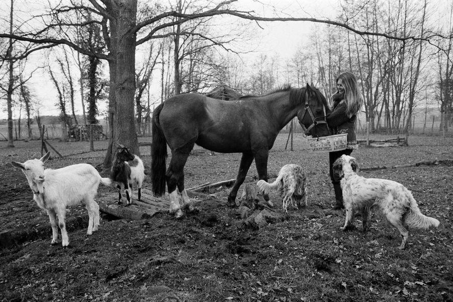 Brigitte BARDOT et ses animaux dans sa propriété de Bazoches. Recueillie par Brigitte, Duchesse, la jument, a trouvé des amis : les deux chèvres Samedi et Titi Pâquerette et deux des six setters.
