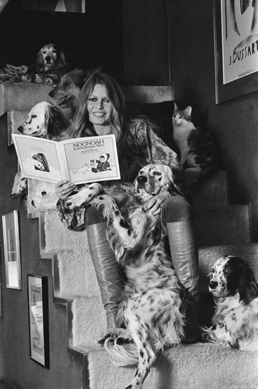 """Brigitte BARDOT présente son livre pour enfants : """"Noonoah le petit phoque blanc"""". Elle ne se sépare jamais de ses chiens, Nini, Mouche, Mienne, Macho, ni de sa chatte. Mars 1978."""