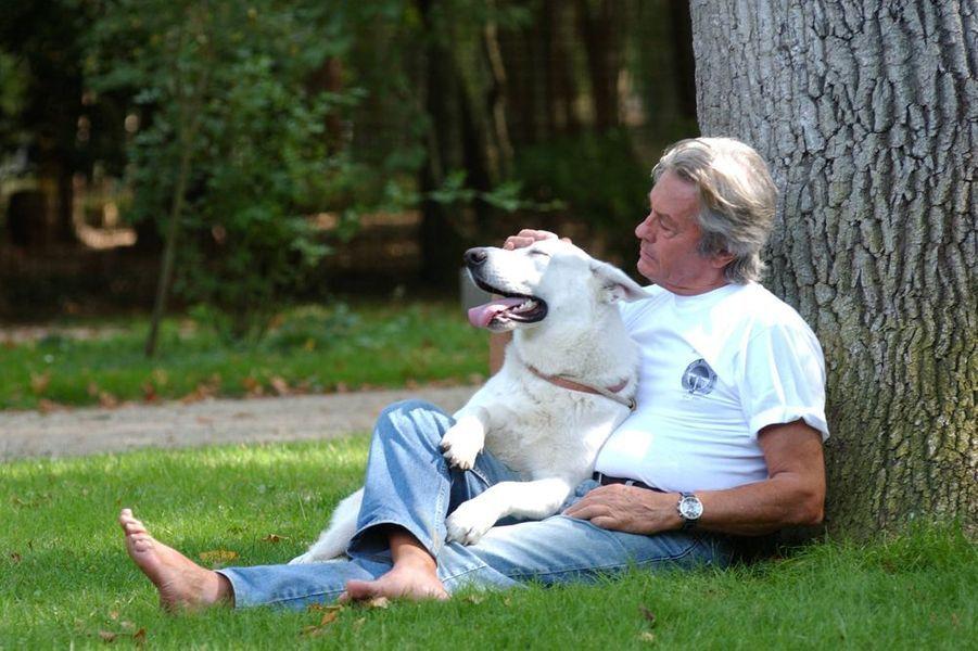 Alain Delon, 69 ans, caresse son chien berger Voyou, 2004