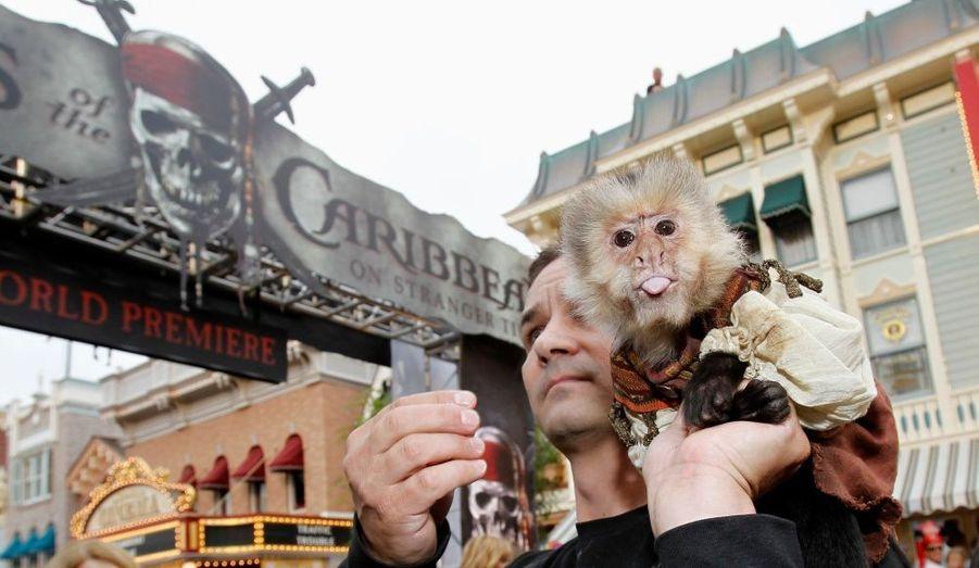 Personne ne manque à l'appel, pas même le singe fétiche de la série (qui joue un macaque mort-vivant) Chiquita.