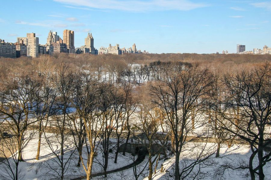 La vue imprenable sur Central Park.