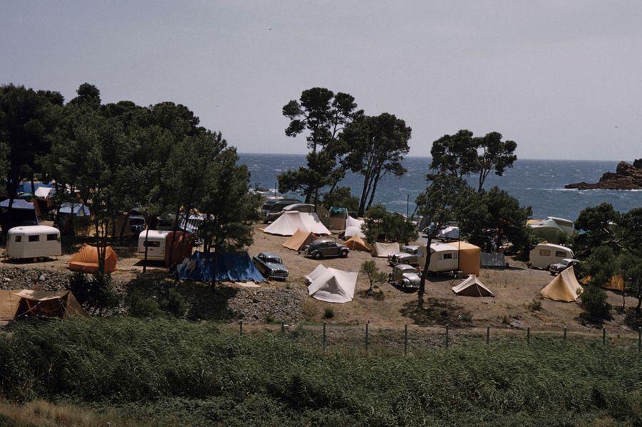 Côte d'Azur, 1958 : un camping sous les pins en bord de mer.