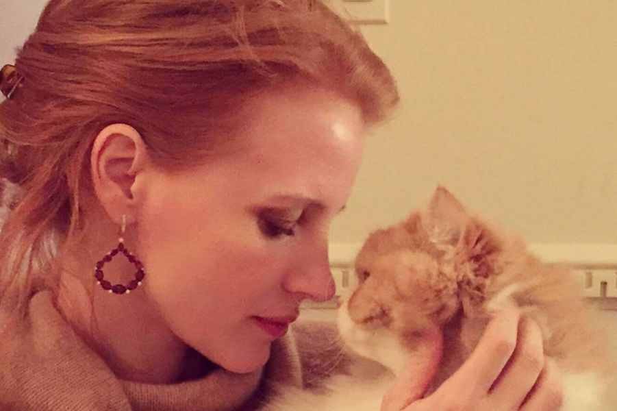 Jessica Chastain et son chat