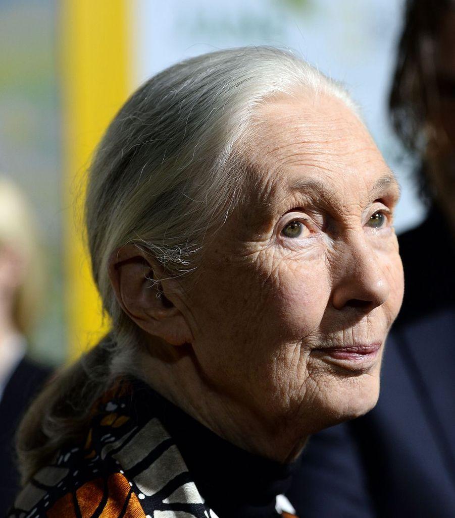 Jane Goodall (84 ans) a fondé l'institut du même nom en faveur du développement durable et de la biodiversité. Ses travaux avec les animaux furent à l'origine de nombreuses découvertes.