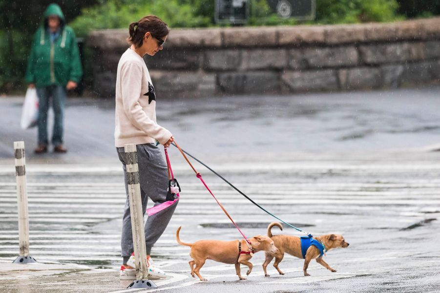 Katie Holmes promène ses chiens à New York, le 13 août 2018