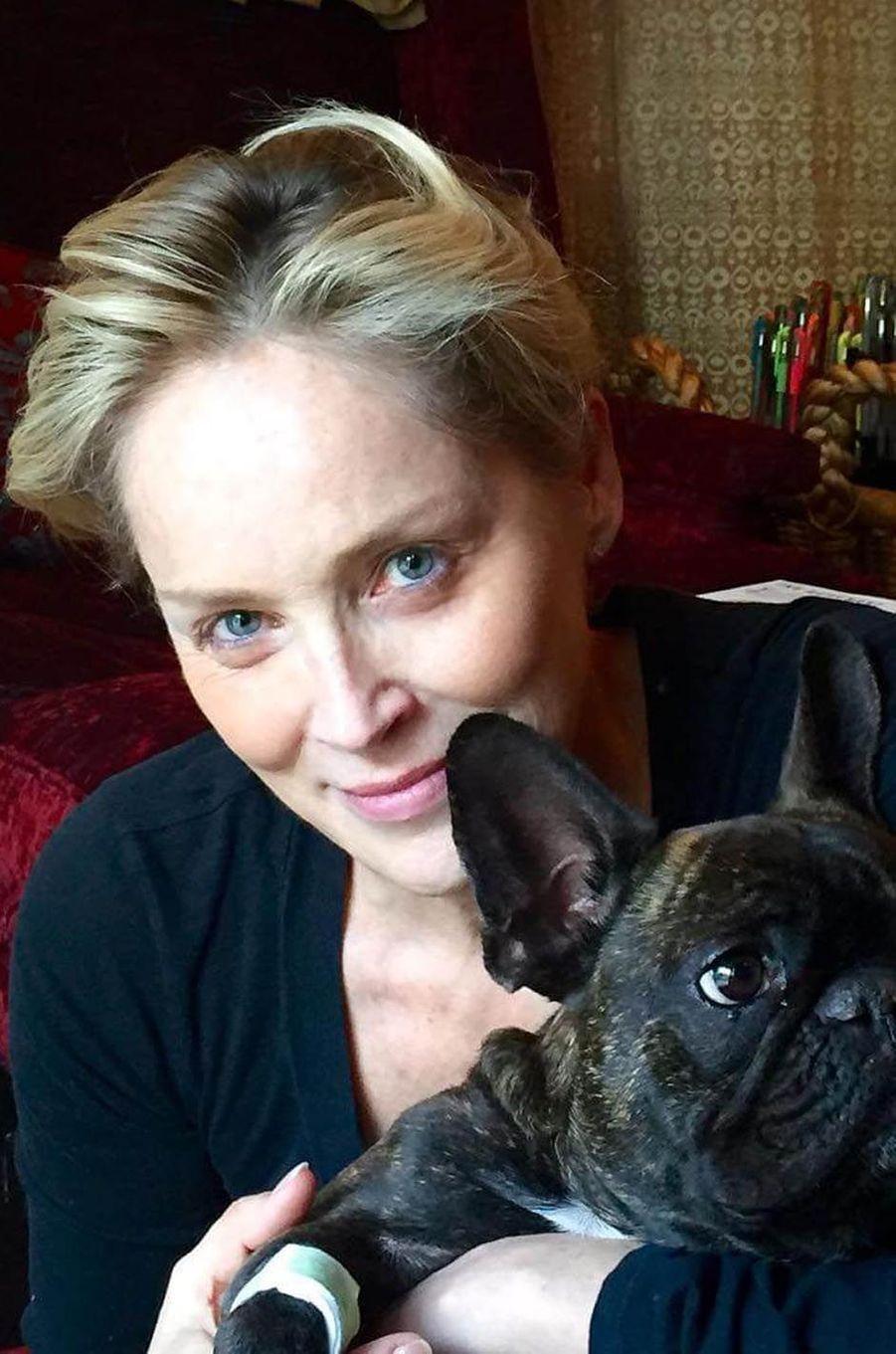 Sharon Stone, le 23 janvier 2016.