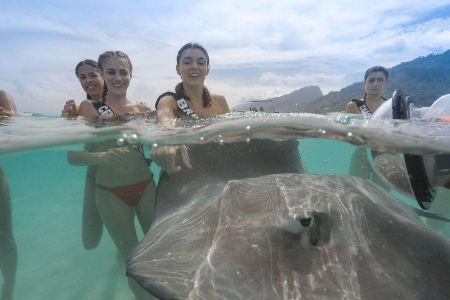 Les candidates au concours Miss France 2020 nagent avec les raies à Tahiti le 20 novembre 2019