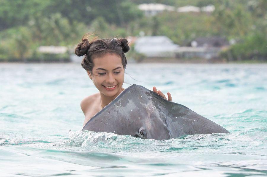 Les candidates au concours Miss France 2020 (et ici Vaimalama Chaves, Miss France 2019) nagent avec les raies à Tahiti le 20 novembre 2019