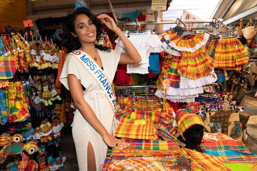 Clémence Botino, de retour sur son île natale. La jeune et jolie Guadeloupéenne qui fut élue Miss France le14 décembre 2019 au Dôme de Marseille a pris la pose devant les photographes.
