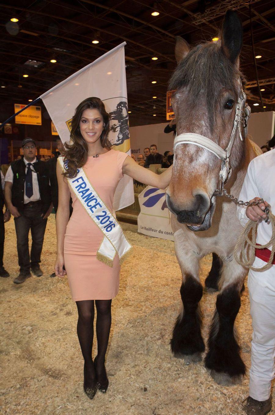 Iris Mittenaere, Miss France 2016