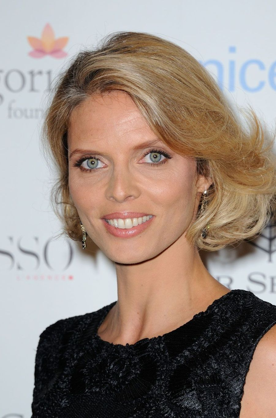 Sylvie Tellier, Miss France 2002