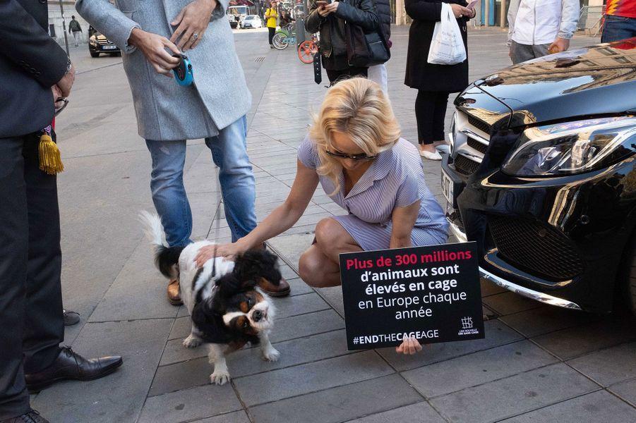 Pamela Anderson etMaxime Dereymez mercredi à Paris