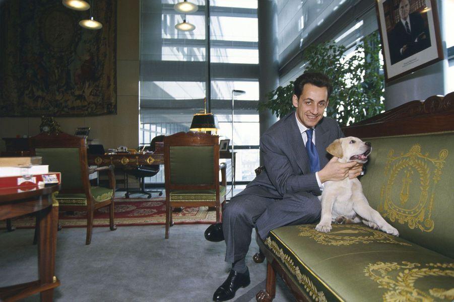 Nouveau ministre du Budget du gouvernement Balladur, Nicolas Sarkozy pose dans son bureau avec son labrador, Indy.