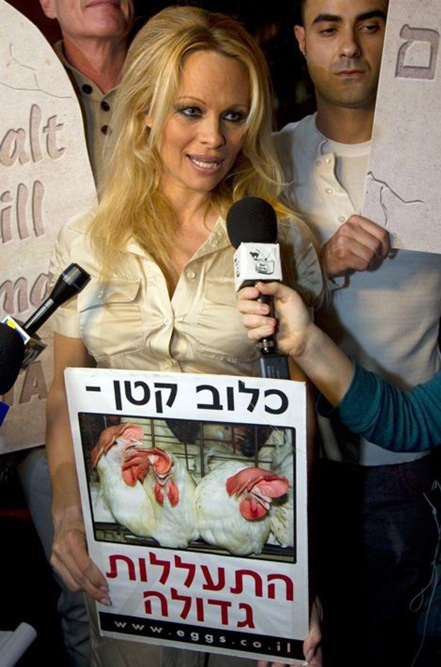 """Pamela Anderson lance la campagne """"Tu ne tueras pas point d'animaux"""" à Tel-Aviv, mars 2011"""