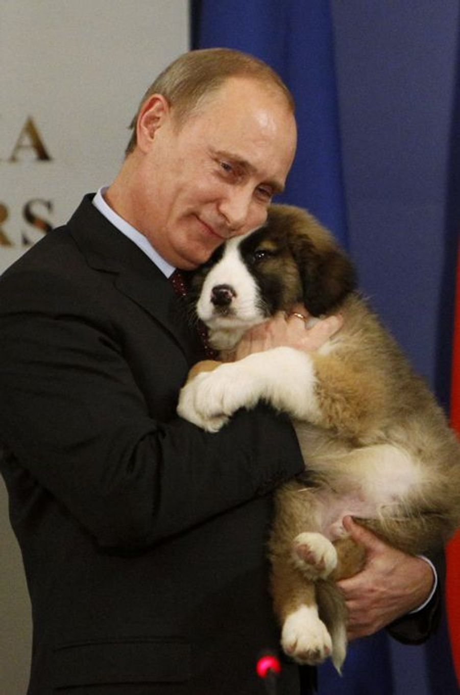 Vladimir Poutine tient dans ses bras un berger bulgare, cadeau du Premier ministre Boiko Borisov, en novembre 2010