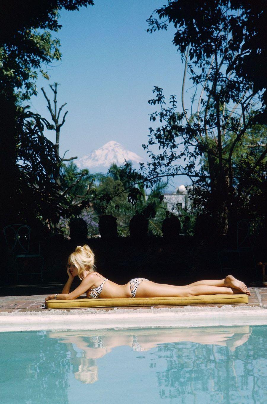 Brigitte Bardot a été la muse des plus grands artistes