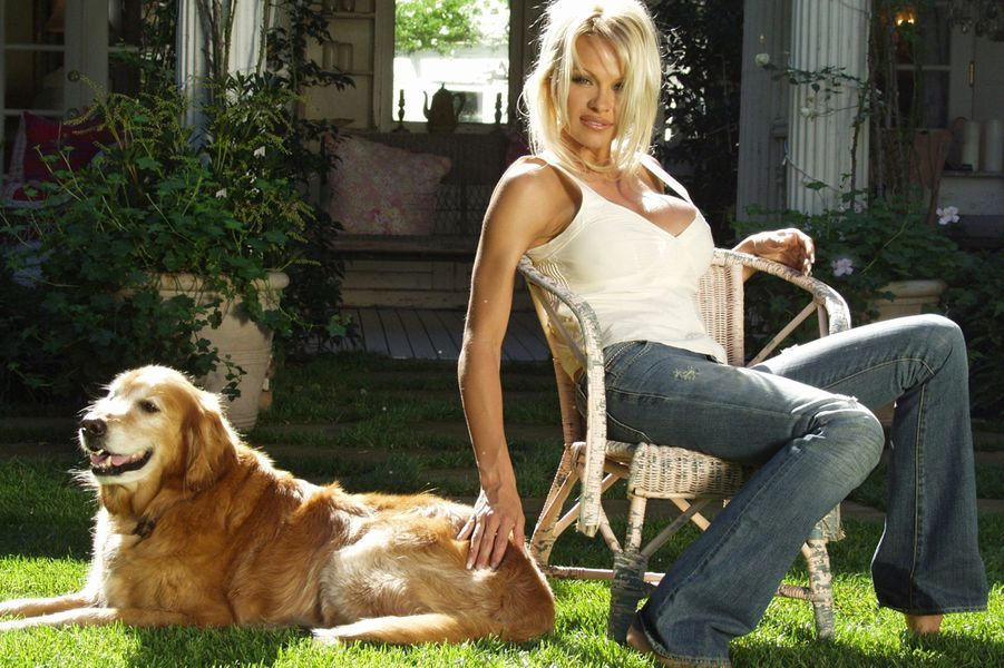 Il était une fois... Pamela Anderson