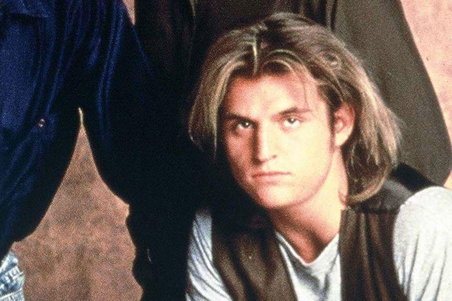 Il n'a pas fallu longtemps à Peter DeLuise pour retrouver un emploi. En 1994, il a obtenu un rôle dans la série «SeaQuestentre», jusqu'en 1996. Il est également apparu dans «Supernatural», «Sanctuary» et a repris son rôle dans «21 Jump Street, le film». C'est surtout en tant que réalisateur qu'il a obtenu le succès, dirigeant des épisodes de «SG-1,Stargate Atlantis», «Kyle XY», ou encore «16 vœux».