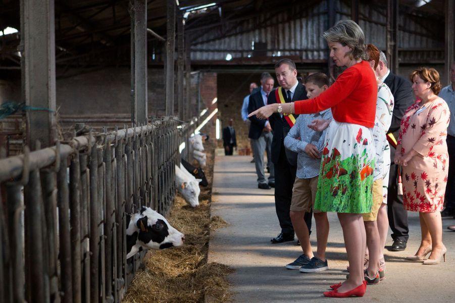 La reine des Belges Mathilde dans une ferme à Maillen, le 13 juin 2017