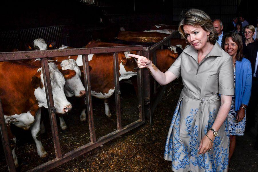La reine Mathilde de Belgique dans une ferme du Limbourg, le 13 juin 2019