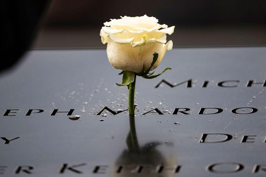 La rose déposée par la reine Mathilde et le roi des Belges Philippe sur le site de Ground Zero à New York, le 11 février 2020