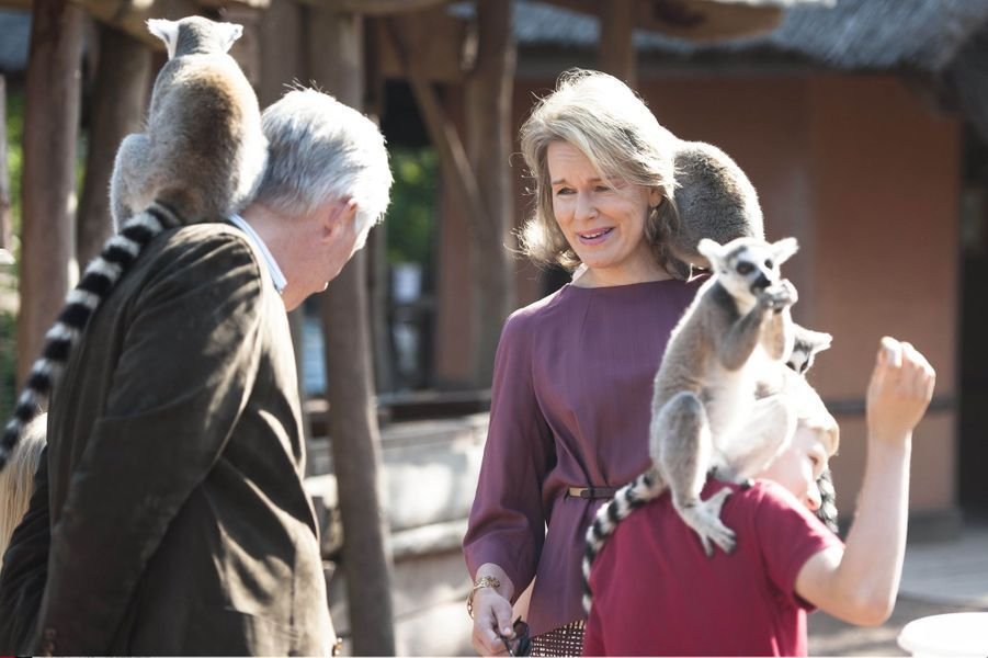 La reine Mathilde, le roi Philippe et le prince Emmanuel de Belgique au Pairi Daiza à Brugelette, le 11 juillet 2015
