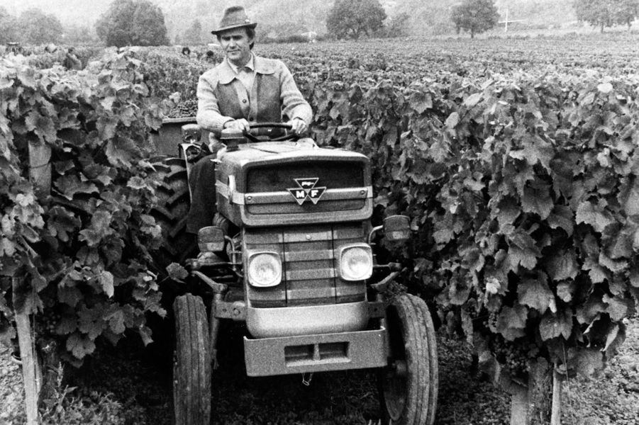 Le prince Henrik de Danemark dans son domaine viticole du château de Cayx, en 1978
