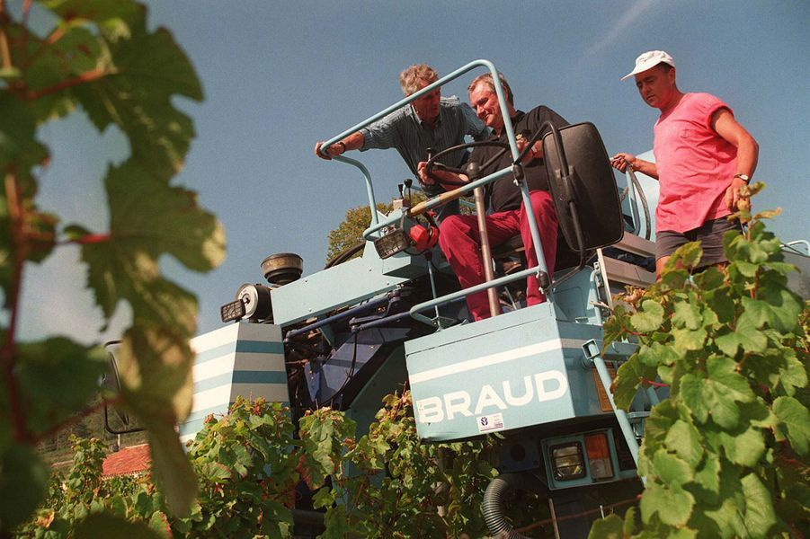 Le prince Henrik de Danemark dans son domaine viticole du château de Cayx, le 17 septembre 1997