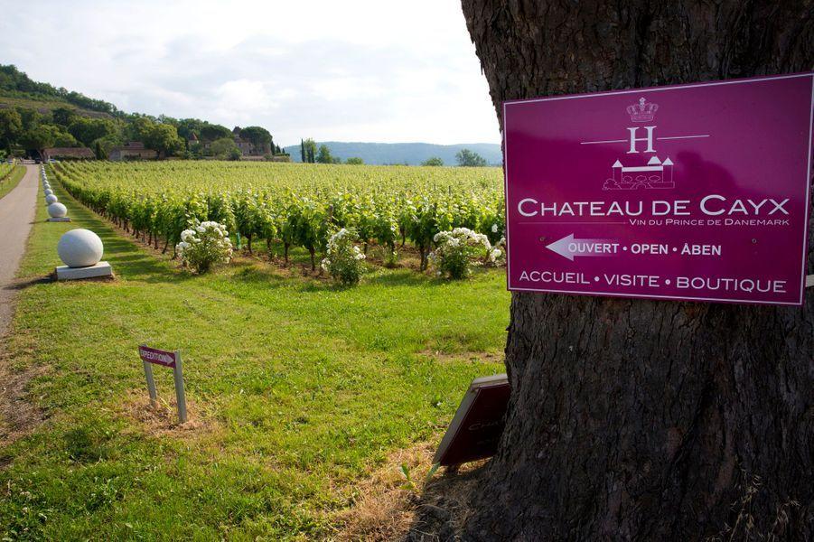 Le domaine viticole du château de Cayx du prince Henrik et de la reine Margrethe II de Danemark, le 11 juin 2014