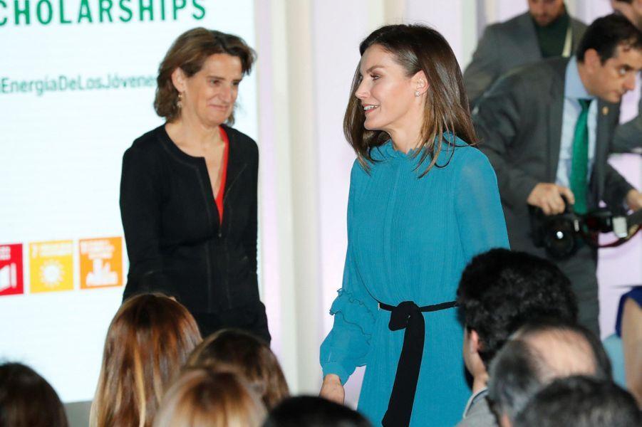 La reine Letizia d'Espagne à Madrid, le 31 janvier 2019