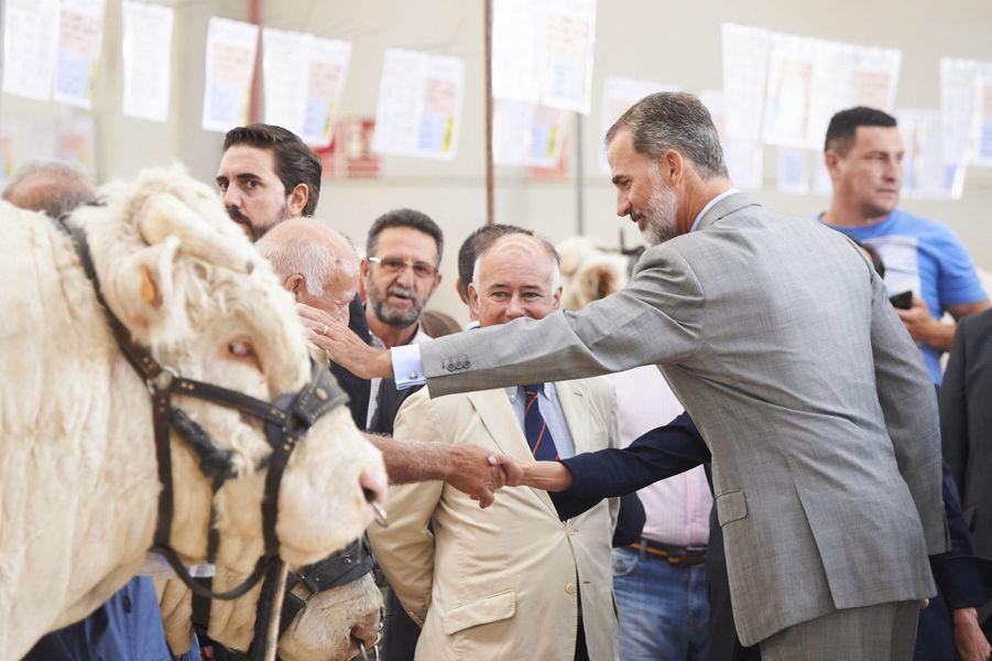 Le roi Felipe VI d'Espagne à Salamanque, le 5 septembre 2018
