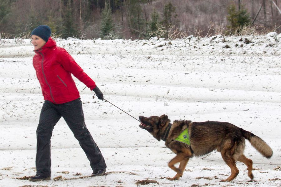 Mette Marit Haakon Norvege À Ski 11 Janv 2017 13