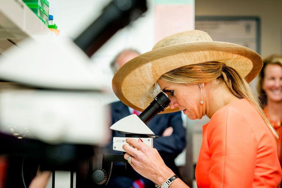 La reine Maxima des Pays-Bas au Van Andel Institute à Grand Rapids, le 2 juin 2015