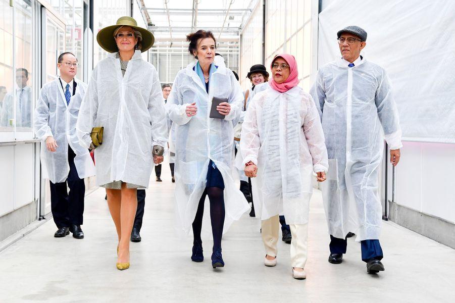La reine Maxima des Pays-Bas avec la présidente de Singapour et son mari à Bleiswijk, le 22 novembre 2018