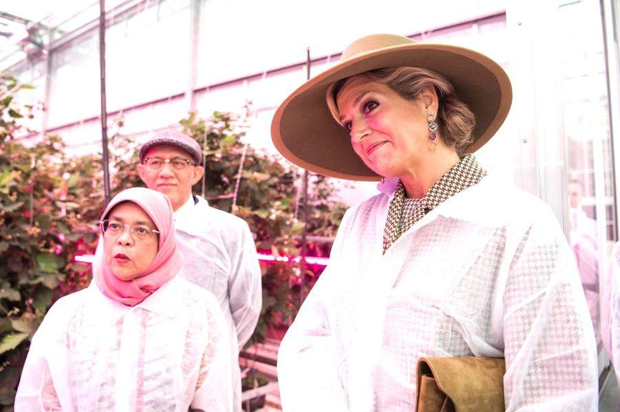 La reine Maxima des Pays-Bas avec le couple présidentiel de Singapour à Bleiswijk, le 22 novembre 2018