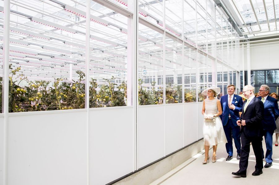 La reine Maxima et le roi Willem-Alexander des Pays-Bas à Enkhuizen, le 28 juin 2018