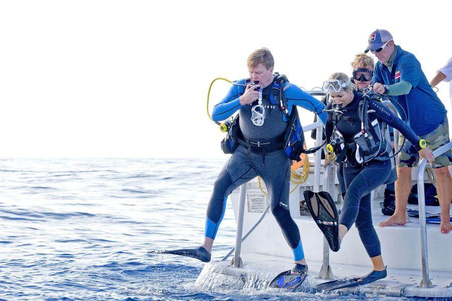 La reine Maxima et le roi Willem-Alexander des Pays-Bas se jettent à l'eau à Saba, le 1er décembre 2017