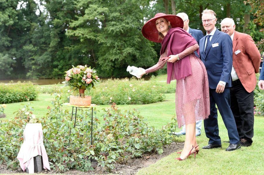 La reine Maxima des Pays-Bas baptise une rose au Winschoten Rosarium, le 13 juin 2017
