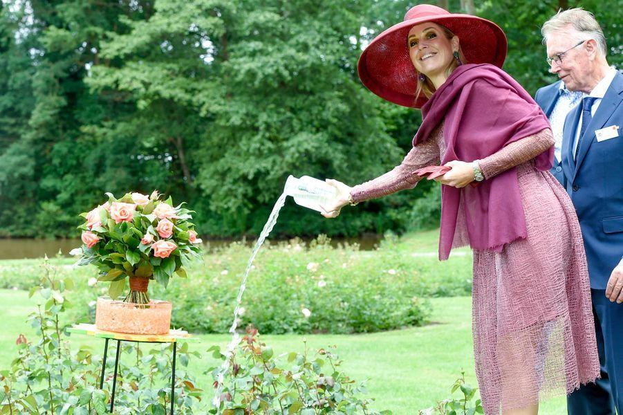 La reine Maxima des Pays-Bas baptise une nouvelle rose à Winschoten, le 13 juin 2017