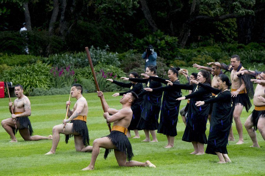Cérémonie d'accueil traditionnelle maori à Wellington, le 7 novembre 2016
