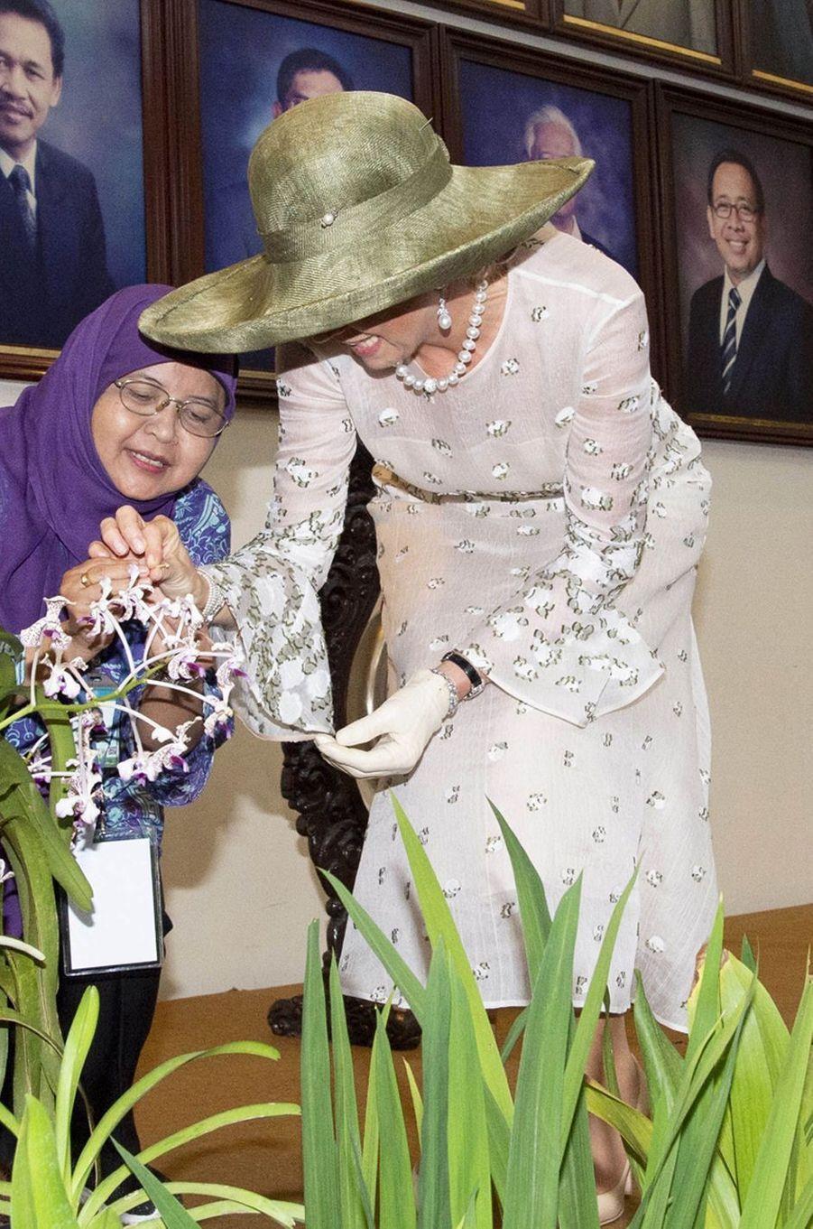 La reine Maxima des Pays-Bas en Indonésie, le 12 mars 2020