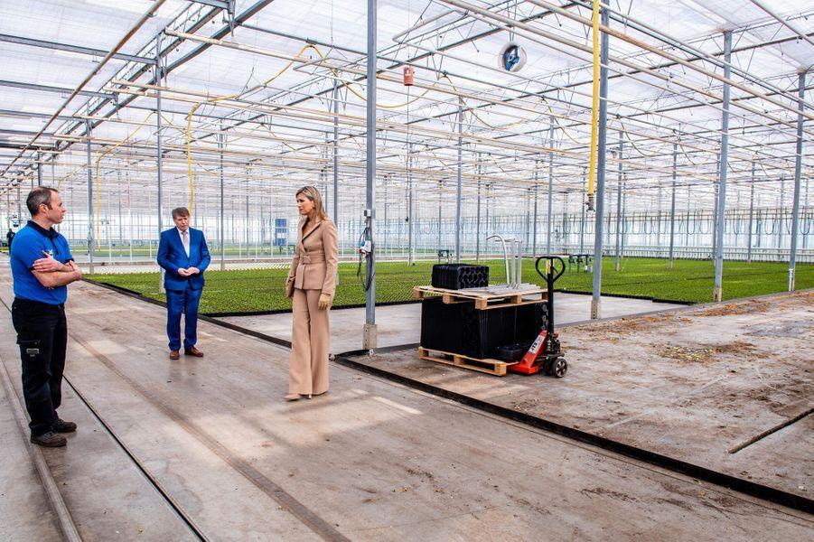 La reine Maxima des Pays-Bas à Honselersdijk, le 27 mars 2020
