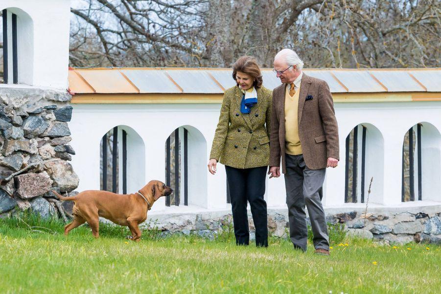 La reine Silvia et le roi Carl XVI Gustaf de Suède avec leur chien au château de Stenhammar à Flen, le 29 avril 2020