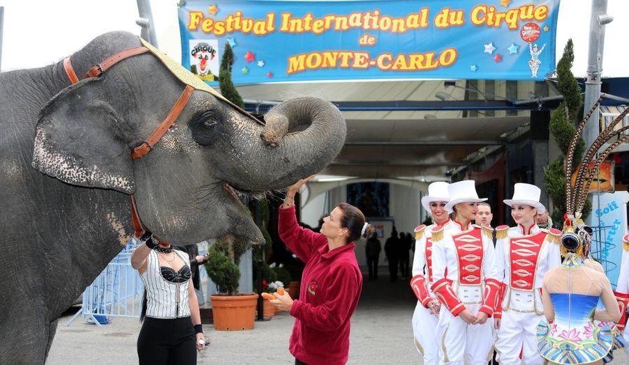 L'amie des éléphants