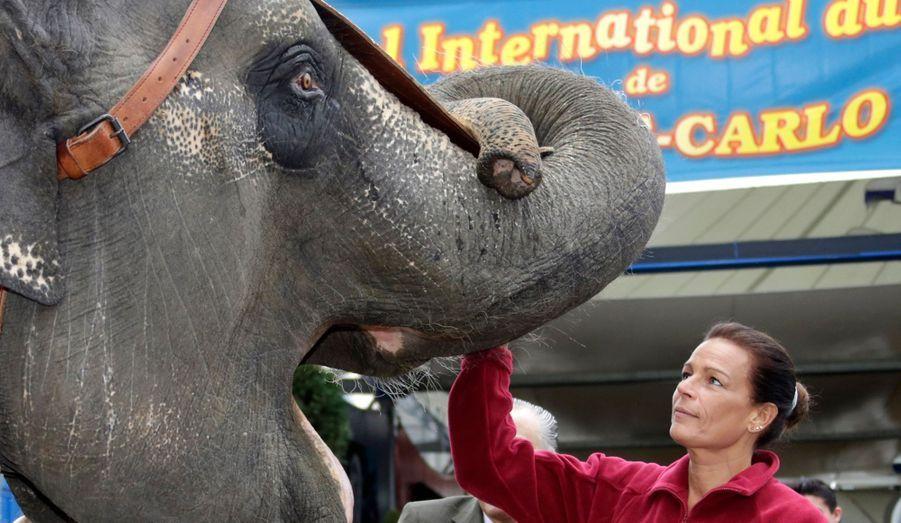 Après avoir pris la défense de Baby et Népal dans les colonnes de Match, Stéphanie de Monaco est allée accueillir les éléphants du Festival international du cirque de Monte-Carlo. L'événement, dont la princesse est présidente, aura lieu du 17 au 27 janvier à Monaco.