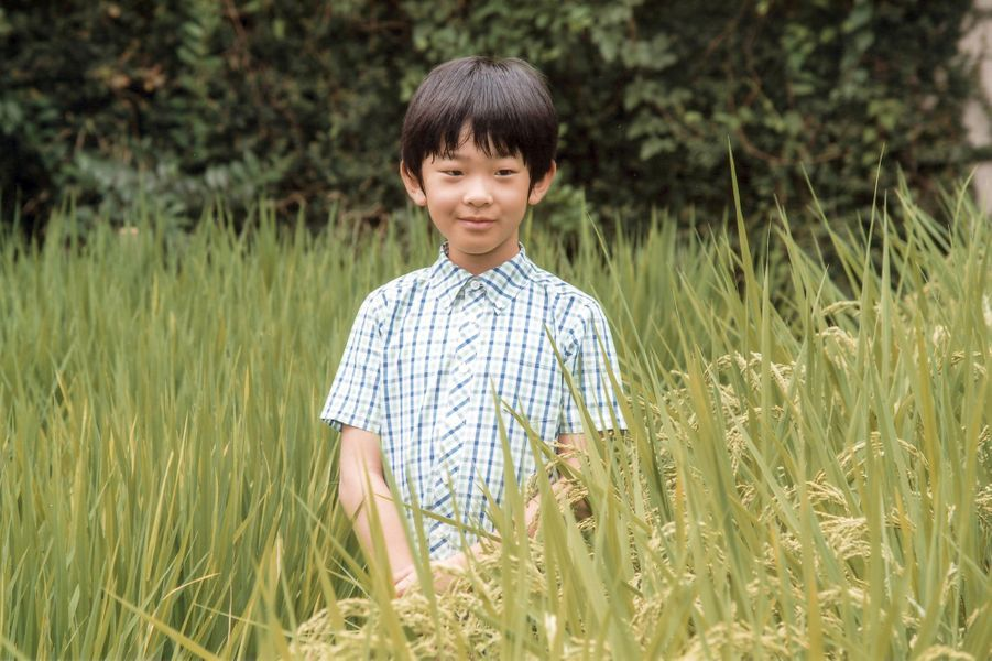 Le prince Hisahito du Japon, le 10 août 2016