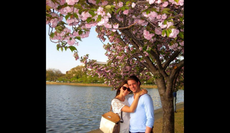 Sous un cerisier à Washington DC, en 2012